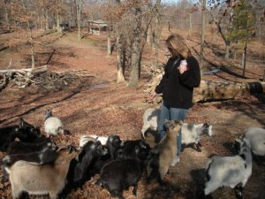 me and goats rainsville